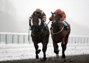 Horse Racing - Lingfield Park