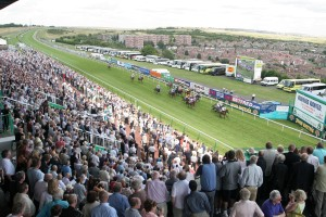 Brighton is one of the 15 racecourses operated by Arena Racing Company and is located in a unique setting.