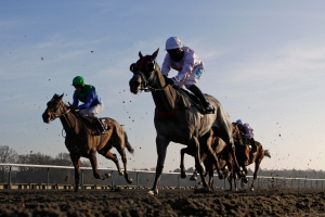 The inaugural All-Weather Championship Finals take place at Lingfield on April 18. Pic: Courtesy Lingfield Park