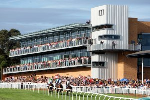 Fontwell Park will benefit as part of Arena Racing Company's  £500,000 investment programme. Pic: Courtesy Fontwell Park.