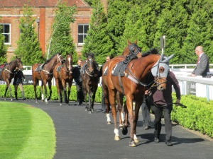 Lingfield Park staged their first turf meeting of 2014.