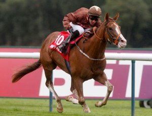 Top Notch Tonto and Dale Swift winning The Betfred.com Superior Mile  pic Dan Abraham - racingfotos.com (Courtesy of Great British Racing)