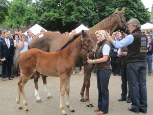 The first offspring of Frankel to be offered for sale and his dam were sold for £1.15million.