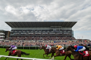 Doncaster hosted the last domestic Group 1 race of the season. Pic: Courtesy of Arena Racing Company.