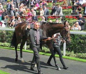 Treve won the Prix de l'Arc de Triomphe for the second successive year at Longchamp on Sunday.