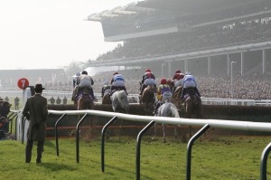 Cheltenham is on the agenda for Coneygree. Pic: Courtesy Cheltenham Racecourse.