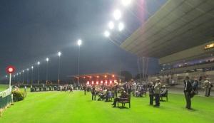 Night racing at Kempton Park
