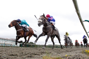 Lingfield Park host three race meetings this week. Pic: Courtesy of Arena Racing Company.