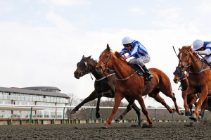 The £1.1-million All-Weather Championships Finals Day  on Good Friday is the feature meeting of the season for Lingfield who race three times this week. Pic: Courtesy of ARC.