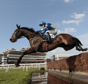 Newbury stage a six-race card for their last jumps meeting of the season on Thursday. Pic: Gavin James/GJ Multimedia (Courtesy of Newbury).