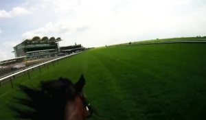 The Rowley Mile.