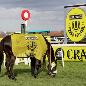 The 2015 Crabbie's Grand National winner Many Clouds enjoys a pick of grass at Aintree. Pic: John Grossick Racing Photography