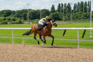The first race on the new Tapeta surface at Wolverhampton was won easily by the Ed Vaughan-trained Primrose Valley who led all the way in the hands of Frederik Tylicki. Pic: Courtesy of ARC.