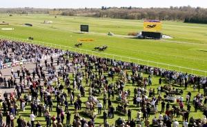 Spring Trials Day at Newbury Racecourse. Pic: Gavin James/GJ Multimedia (Courtesy of Newbury).