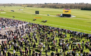 Spring Trials Day at Newbury Racecourse. Pic: Gavin James/GJ Multimedia (Courtesy of Newbury).