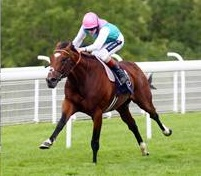 Frankel won five times at Ascot.