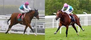 Noble Mission (left) and Frankel (right) were trained at Warren Place Stables.