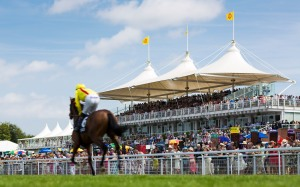 Ladies Day at Glorious Goodwood 2014. Pic: Christopher Ison  (Courtesy of Gooodwood).