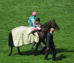 Time Test was an impressive winner at Royal Ascot.