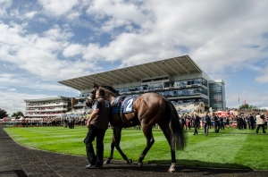 Eight runners are set to contest the Ladbrokes St Leger. Pic: Courtesy of ARC.