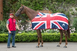 Red Cadeaux has finished second three times in the Melbourne Cup. (Pic: Courtesy of Great British Racing).