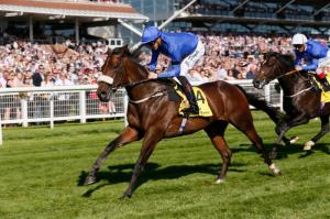 Ribchester wins at Newbury. Pic: Courtesy of Newbury Racecourse.