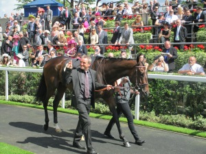 Treve bids to win the Arc for the third successive year.
