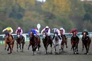 All-weather racing at Lingfield Park.
