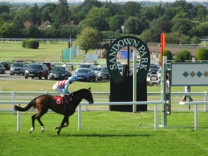 Sandown Park hosts national hunt and flat racing.