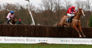Sire de Grugy winning the 2014 Tingle Creek