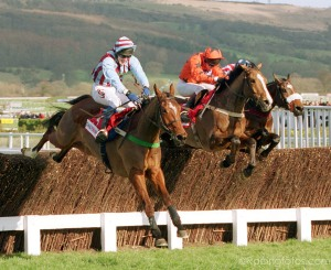 Cheltenham 15/3/2000.The Queen Mother Chase. Winner Edredon Bleu - Tony McCoy