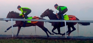 rivet-1-resized-rivet-is-pictured-above-exercising-on-warren-hill-in-newmarket-this-morning-he-is-the-horse-on-the-right-ridden-by-doric-binot-being-led-by-ta