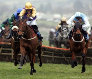 brave-inca-2-2006-champion-hurdle-cracingfotos