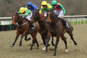 Lancelot Du Lac (second right) in action in the Betway Hever Sprint