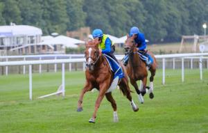Masar and Brett Doyle galloping at Newmarket on 30 June 2018 ahead of th...