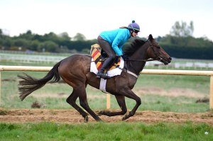 Skitter Scatter exercising this morning ahead of her QIPCO 1000 Guineas bid on Sunday © Newmarket Racecourses Pat Healy