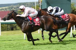 Too Darn Hot - Sussex Stakes